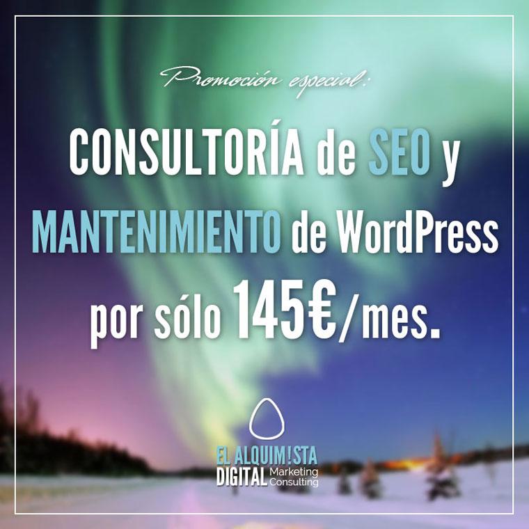 Promo Mantenimiento WP y SEO Mensual